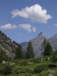 576361_mountain